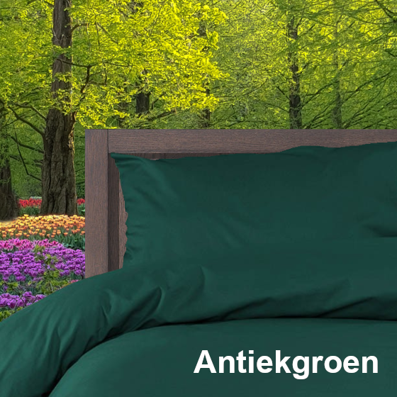 Dekbedovertrek Double Face effen Antiekgroen Alpa